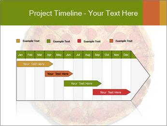 0000079933 PowerPoint Templates - Slide 25
