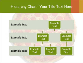 0000079933 PowerPoint Templates - Slide 67