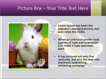 0000079934 PowerPoint Template - Slide 13