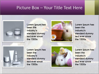 0000079934 PowerPoint Template - Slide 14