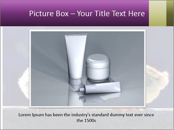 0000079934 PowerPoint Template - Slide 15