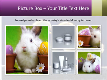 0000079934 PowerPoint Template - Slide 19