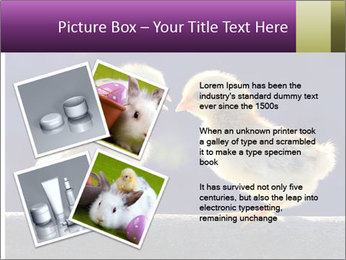 0000079934 PowerPoint Template - Slide 23