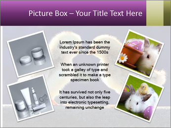 0000079934 PowerPoint Template - Slide 24