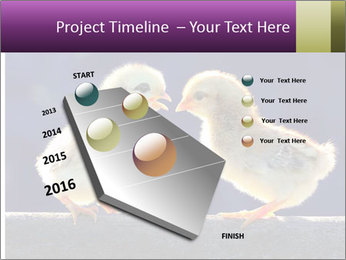 0000079934 PowerPoint Template - Slide 26