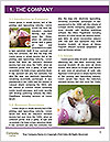 0000079934 Word Template - Page 3