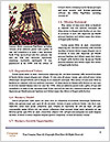 0000079939 Word Templates - Page 4
