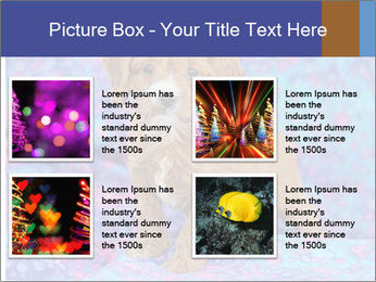 0000079941 PowerPoint Templates - Slide 14