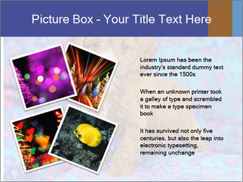 0000079941 PowerPoint Templates - Slide 23