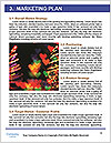 0000079941 Word Templates - Page 8