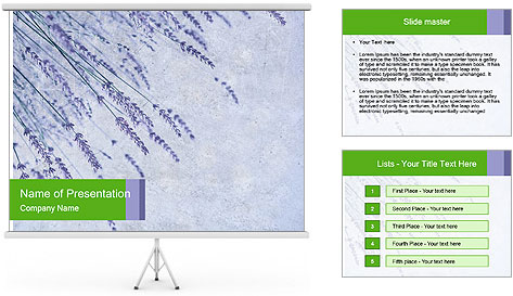 0000079943 PowerPoint Template