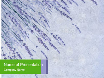 0000079943 PowerPoint Template - Slide 1