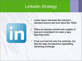 0000079943 PowerPoint Template - Slide 12