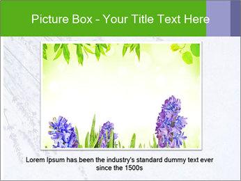 0000079943 PowerPoint Template - Slide 15