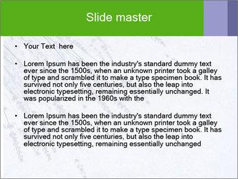 0000079943 PowerPoint Template - Slide 2