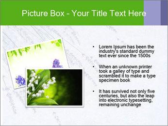 0000079943 PowerPoint Template - Slide 20