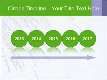 0000079943 PowerPoint Template - Slide 29