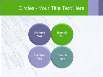 0000079943 PowerPoint Template - Slide 38
