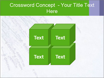 0000079943 PowerPoint Template - Slide 39
