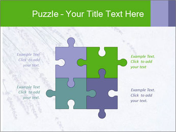 0000079943 PowerPoint Template - Slide 43
