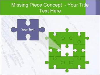 0000079943 PowerPoint Template - Slide 45