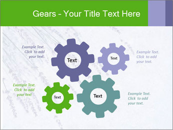 0000079943 PowerPoint Template - Slide 47