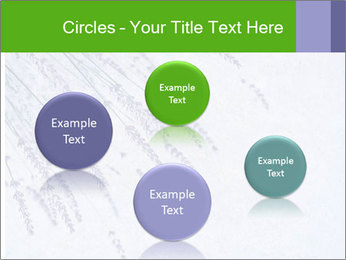 0000079943 PowerPoint Template - Slide 77
