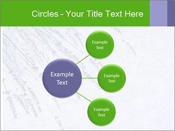 0000079943 PowerPoint Template - Slide 79