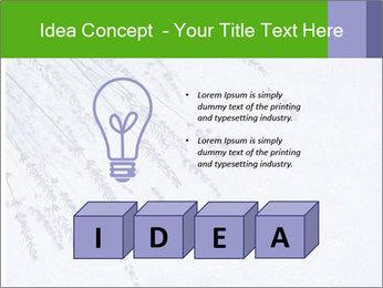0000079943 PowerPoint Template - Slide 80
