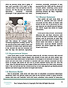 0000079944 Word Template - Page 4