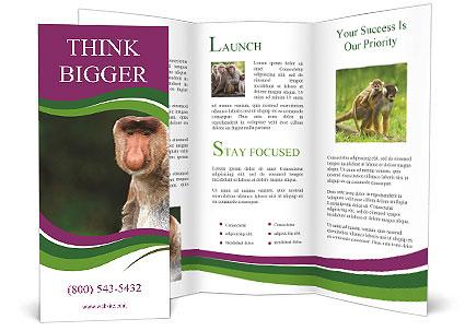 0000079951 Brochure Templates