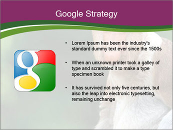 0000079951 PowerPoint Templates - Slide 10