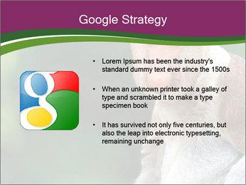 0000079951 PowerPoint Template - Slide 10