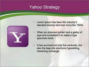 0000079951 PowerPoint Template - Slide 11