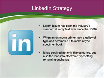 0000079951 PowerPoint Template - Slide 12