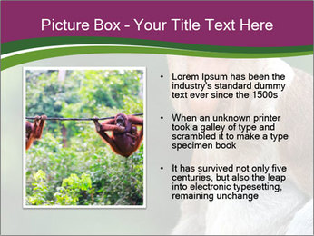 0000079951 PowerPoint Templates - Slide 13