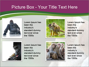0000079951 PowerPoint Templates - Slide 14
