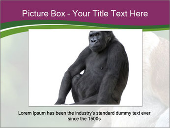 0000079951 PowerPoint Templates - Slide 15