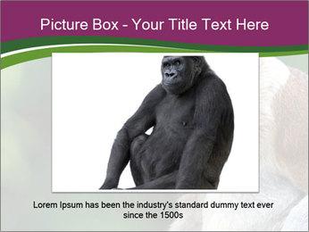 0000079951 PowerPoint Template - Slide 15