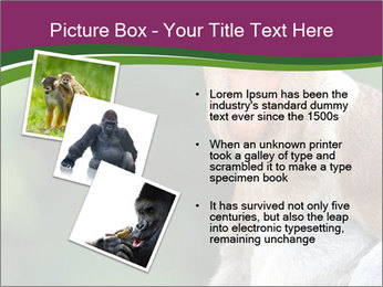 0000079951 PowerPoint Template - Slide 17