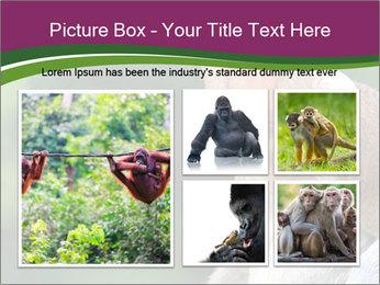 0000079951 PowerPoint Template - Slide 19