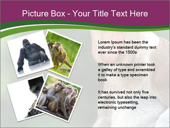 0000079951 PowerPoint Templates - Slide 23