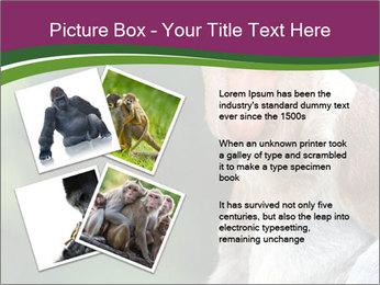 0000079951 PowerPoint Template - Slide 23