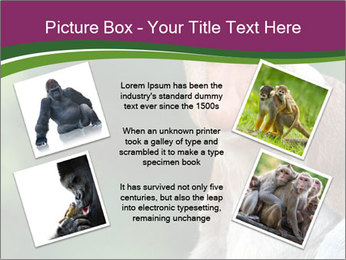 0000079951 PowerPoint Templates - Slide 24