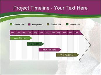 0000079951 PowerPoint Template - Slide 25