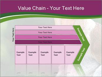 0000079951 PowerPoint Template - Slide 27