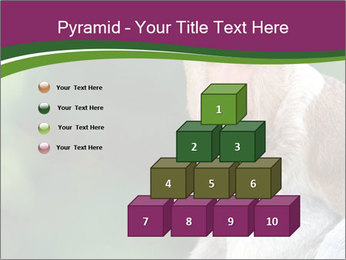 0000079951 PowerPoint Templates - Slide 31