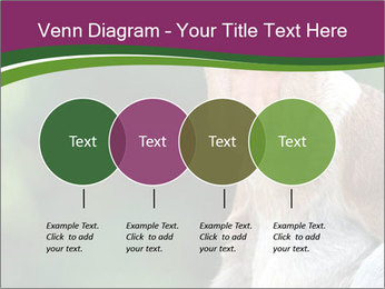 0000079951 PowerPoint Templates - Slide 32