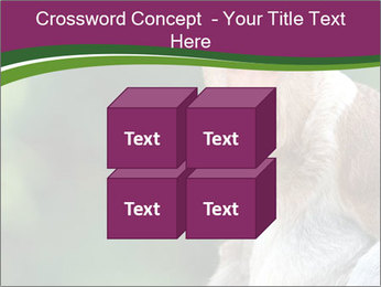 0000079951 PowerPoint Templates - Slide 39