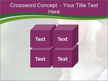 0000079951 PowerPoint Template - Slide 39